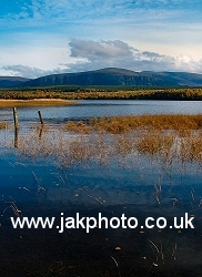 Loch Insh Marshes cairngorm national Park - jakphoto.co.uk